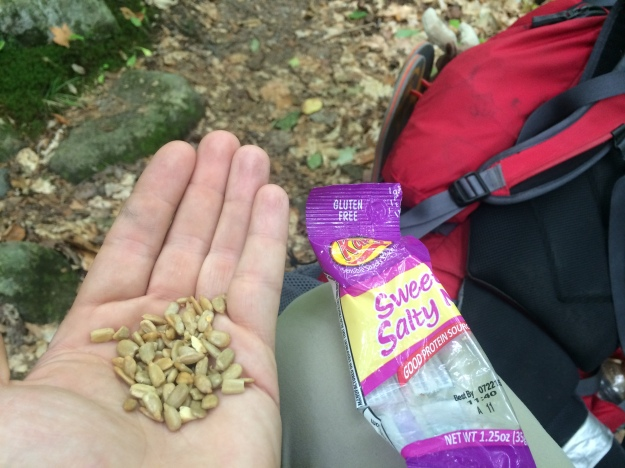 Ah sunflower seeds. After all the other trail mix is gone you are still there for me.